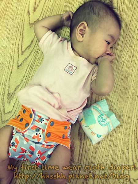 cloth diaper-1.jpg