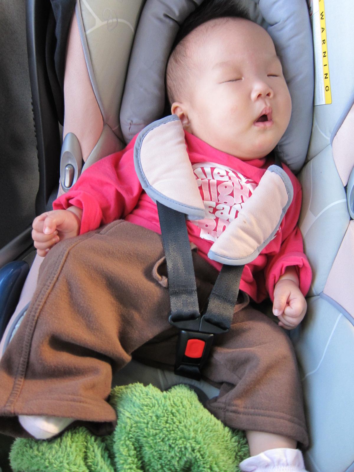 0920-61-綠豆睡著了.JPG