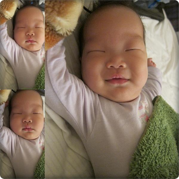 睡夢中偷笑的綠豆