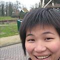 前往荷蘭的代表:風車