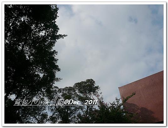 P1110222.jpg