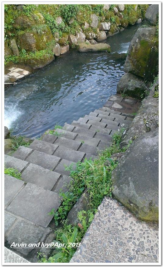 竹子湖 044