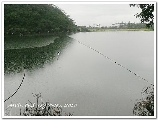 P1080383.jpg