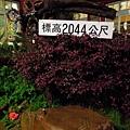 DSCN5023