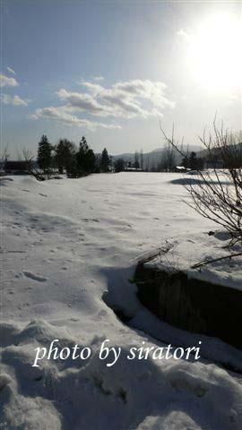 今年的雪少於往年