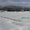 稻田都被雪覆蓋了。