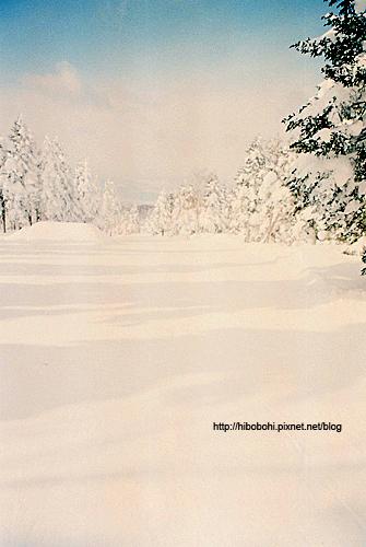 此時正在飄著雪,能見度整個變差了。