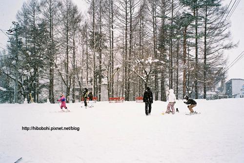 看到照片中那紛飛的大雪了嗎?這場雪足足下了有兩小時。