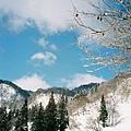 露出藍天,滑起雪來也特別愉快。