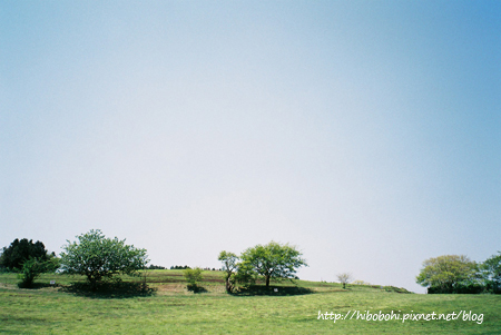 遼闊的牧場景色
