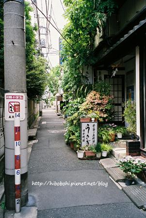 從不忍通り拐進藍染小路之前的小巷子裡,探險從這裡開始。