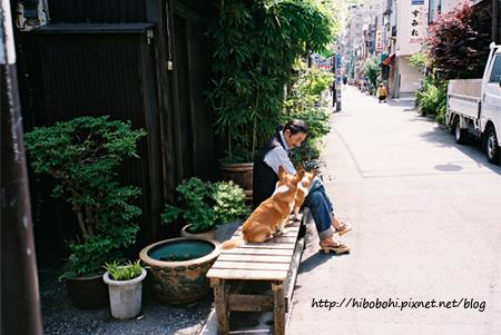 主人與寵物狗坐在門前的木椅上打發時間