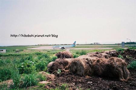 飛機與牧草
