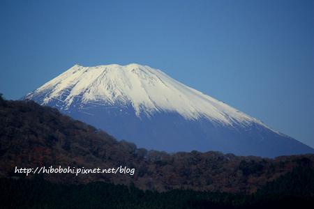 在元箱根港看到的富士山
