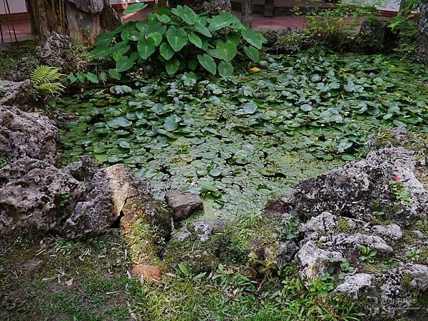 1021122 新埔南園 167-watermark.JPG