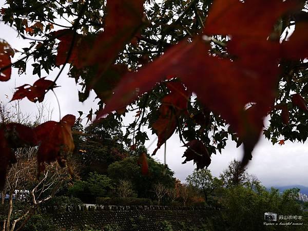 1021216 拱北殿與蘭陽博物館(pixnet)_042-watermark.JPG