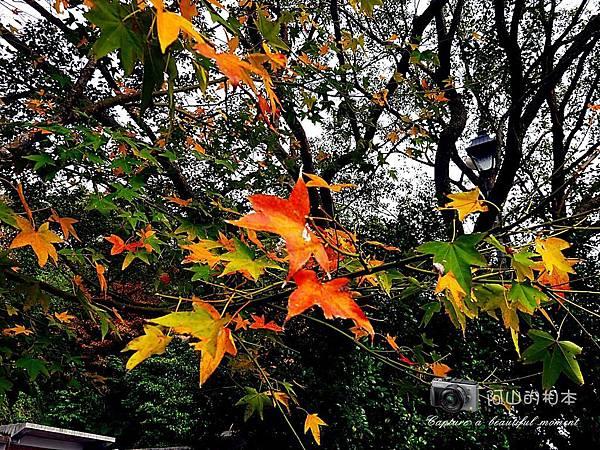 1021216 拱北殿與蘭陽博物館(pixnet)_043-watermark.jpg