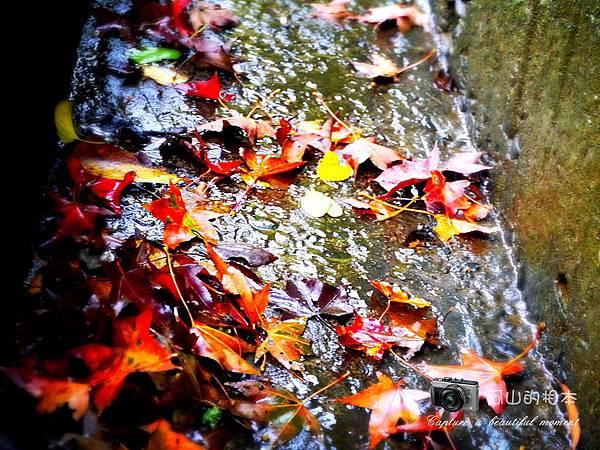1021216 拱北殿與蘭陽博物館(pixnet)_046-watermark.jpg