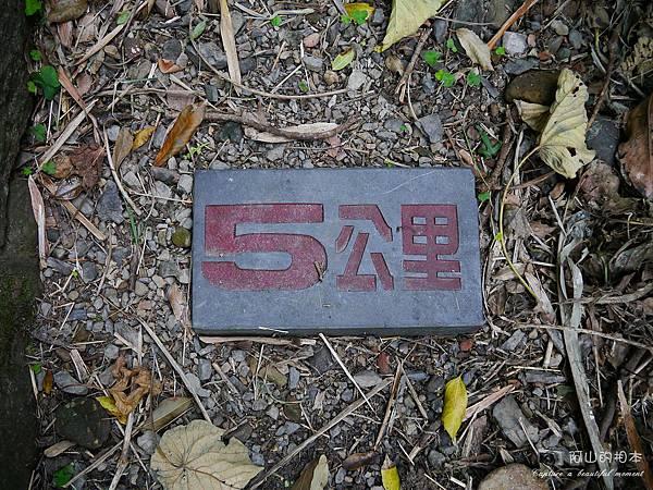 1040228 桃源谷步道006-wm.JPG