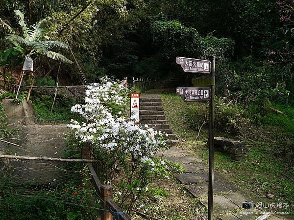 1040228 桃源谷步道008-wm.JPG