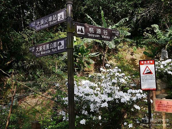 1040228 桃源谷步道009-wm.JPG
