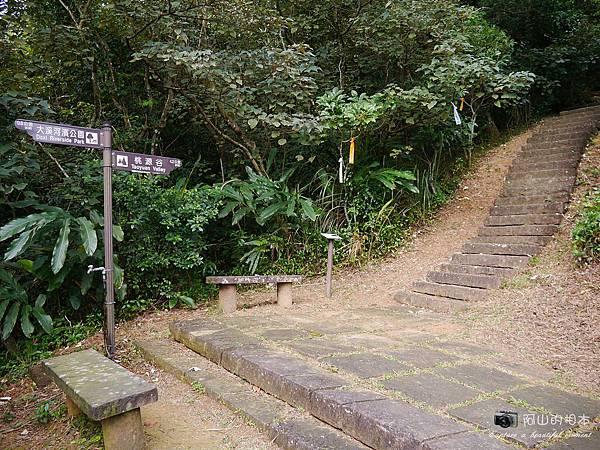 1040228 桃源谷步道012-wm.JPG