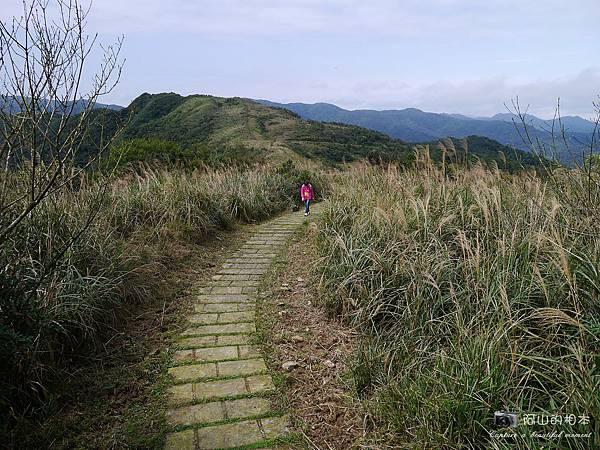 1040228 桃源谷步道055-wm.JPG