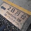 1051024 嘉義阿里山(PIXNET)023.jpg