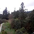 1051024 嘉義阿里山(PIXNET)037.jpg
