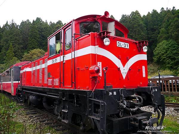 1051024 嘉義阿里山(PIXNET)110.JPG
