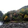 2013.12.20 秀巒楓情