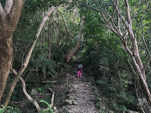 同禮步道登山口.jpg