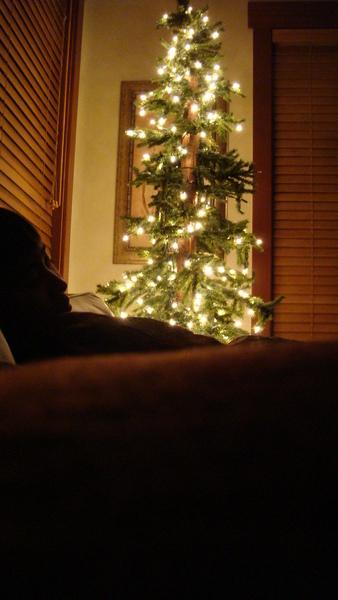 傑元跟聖誕樹
