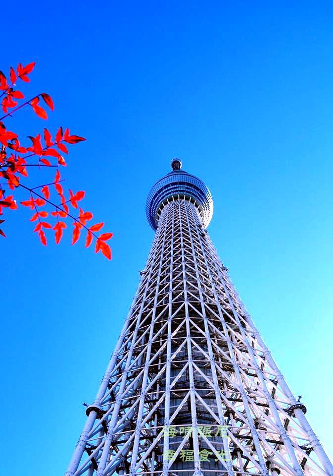 晴空塔 SkyTree~ Tokyo Solamachi.jpg