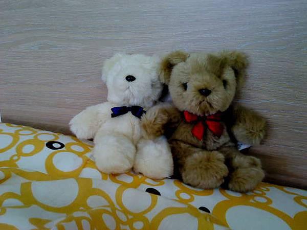 bears_0517