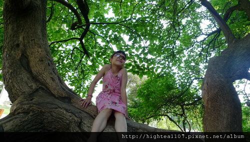 20110709-63.jpg