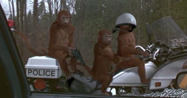 猴子騎機車