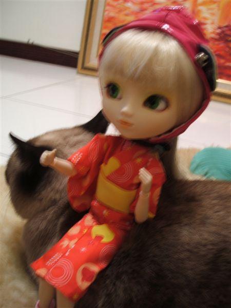 村姑與貓咪沙發