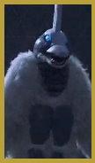 雪貢.jpg