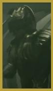 蝙蝠亞馬遜2.jpg