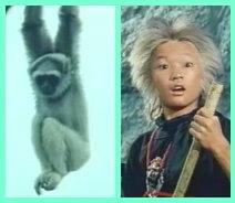 猴童.jpg