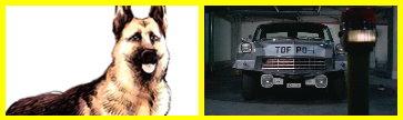 獵犬3號.jpg