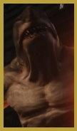 (敵)王者鯊.jpg