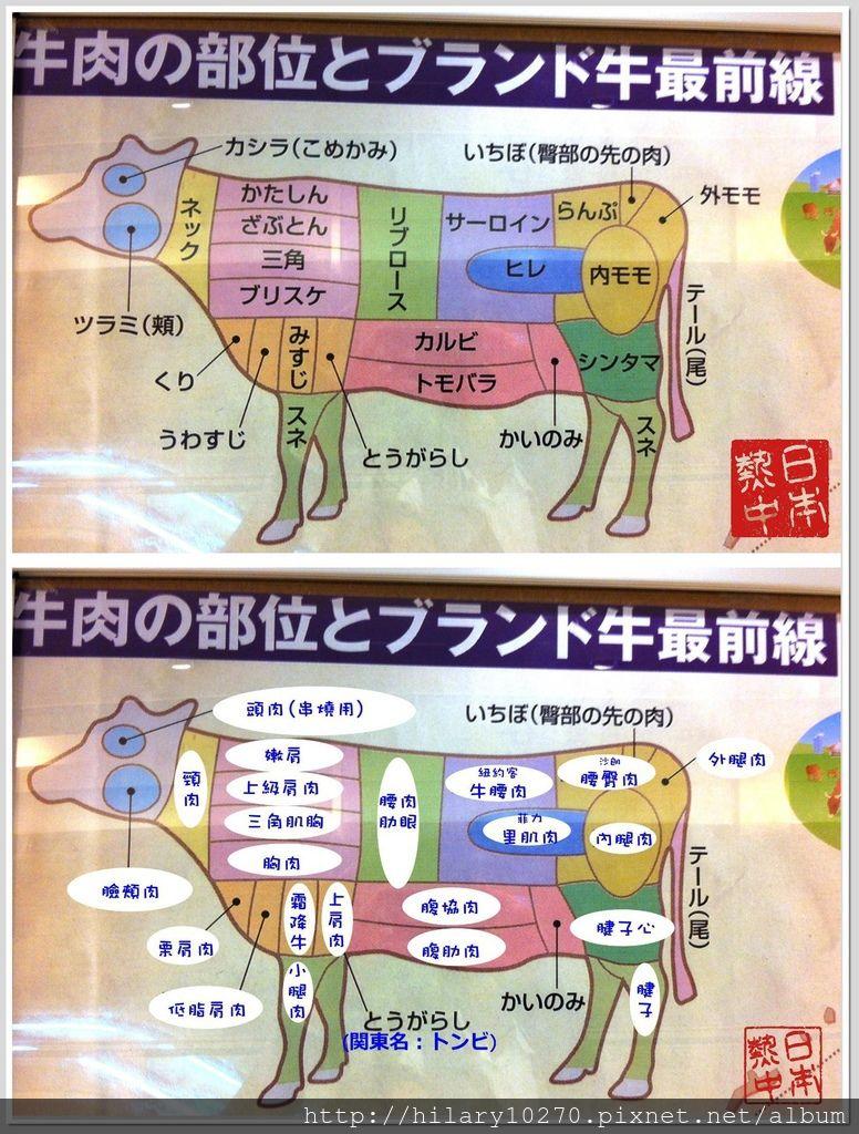 牛肉部位對照圖