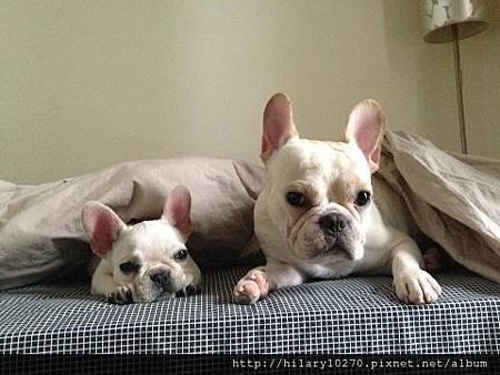 Lala&Mady