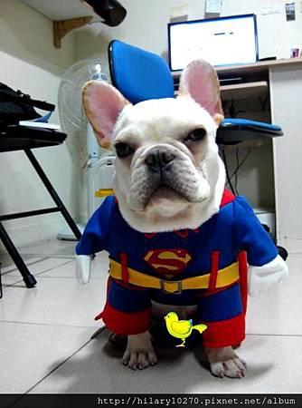 龍龍-地球保衛隊-超狗