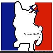 500x500 french flag logo