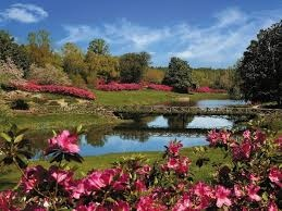 bellingrath gardens.jpg