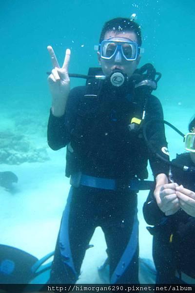 長灘島深潛-1