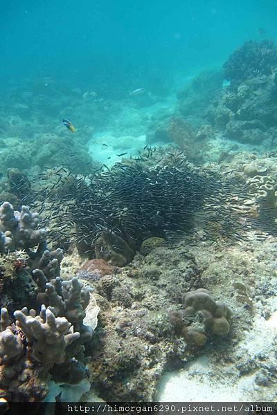 長灘島深潛海景-4